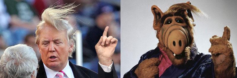 president trump vs. alf comparison meme